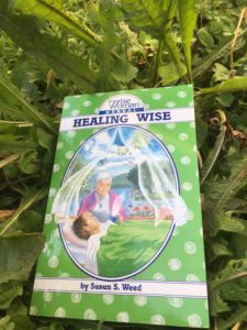 Wise Woman Healing Wise by Susun Weed
