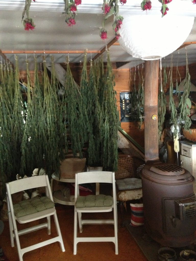 The indoor classroom and drying room at Susun Weed