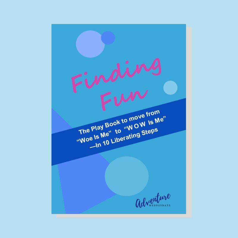 Finding Fun ebook cover