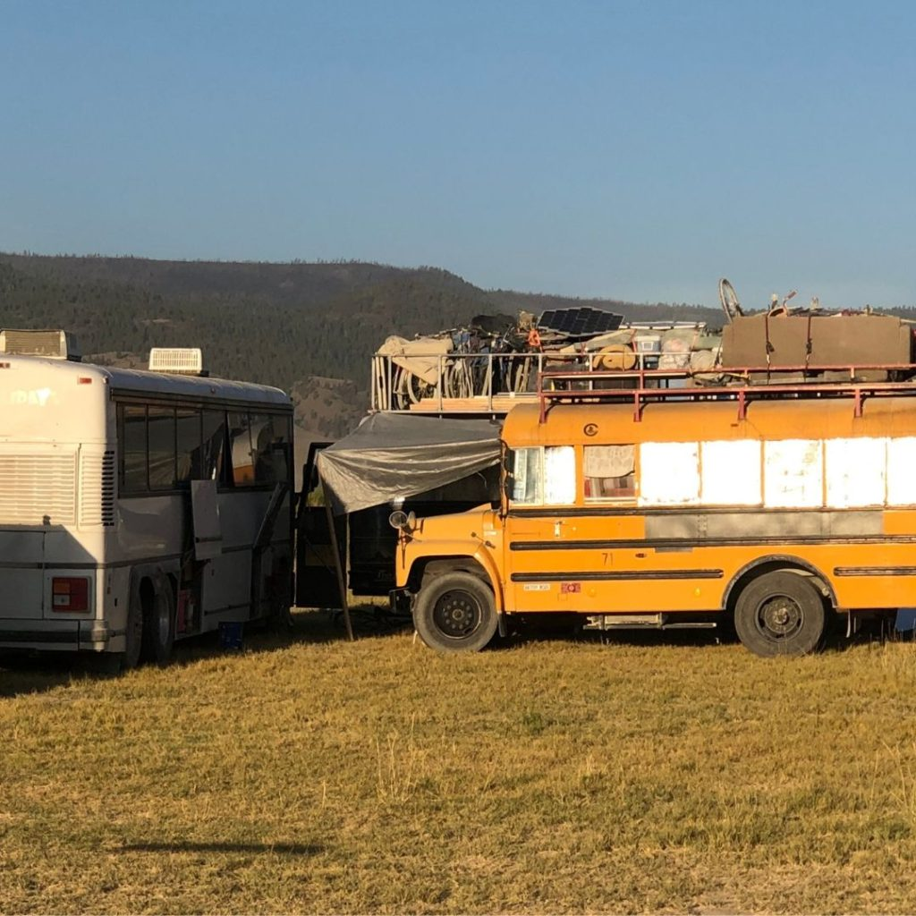 assorted converted buses into traveling homes & campers at a campground
