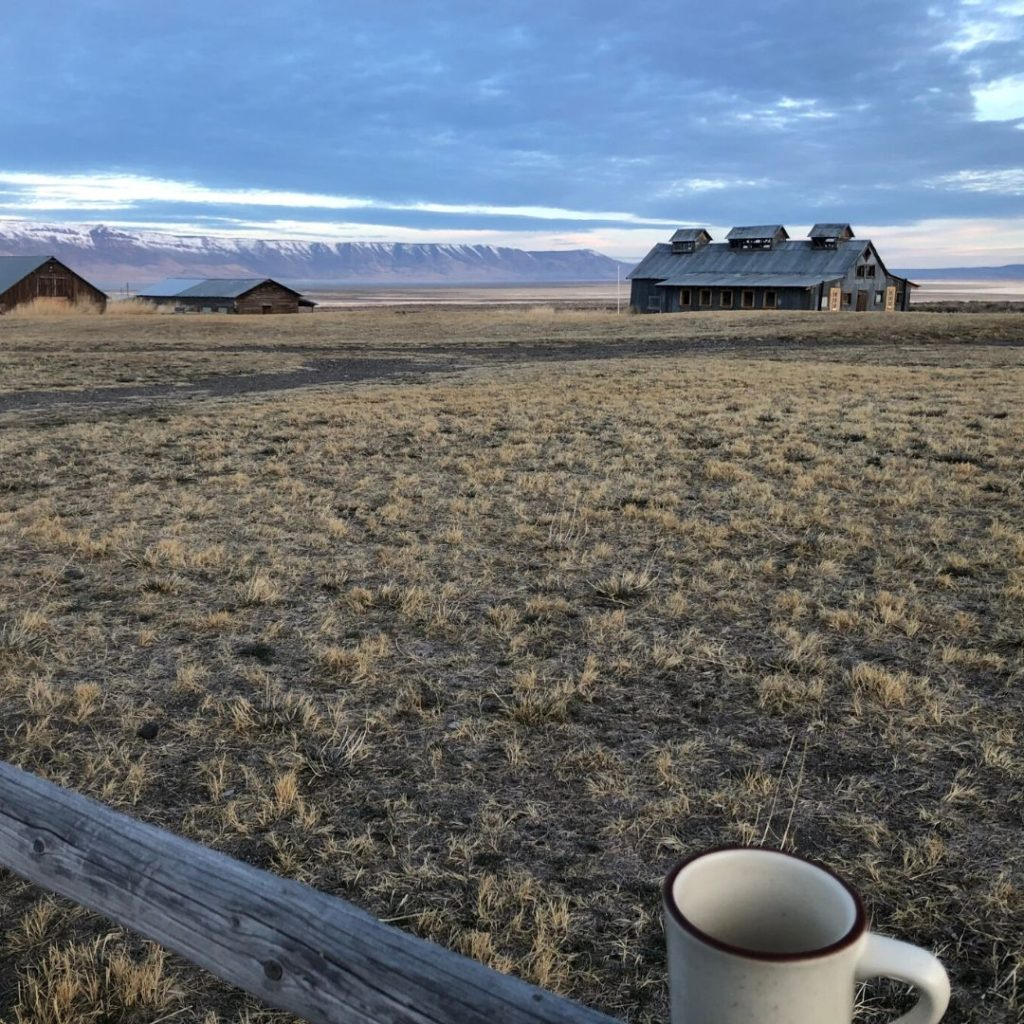 the barn covering the hot spring pool in the distance, coffee cup in front