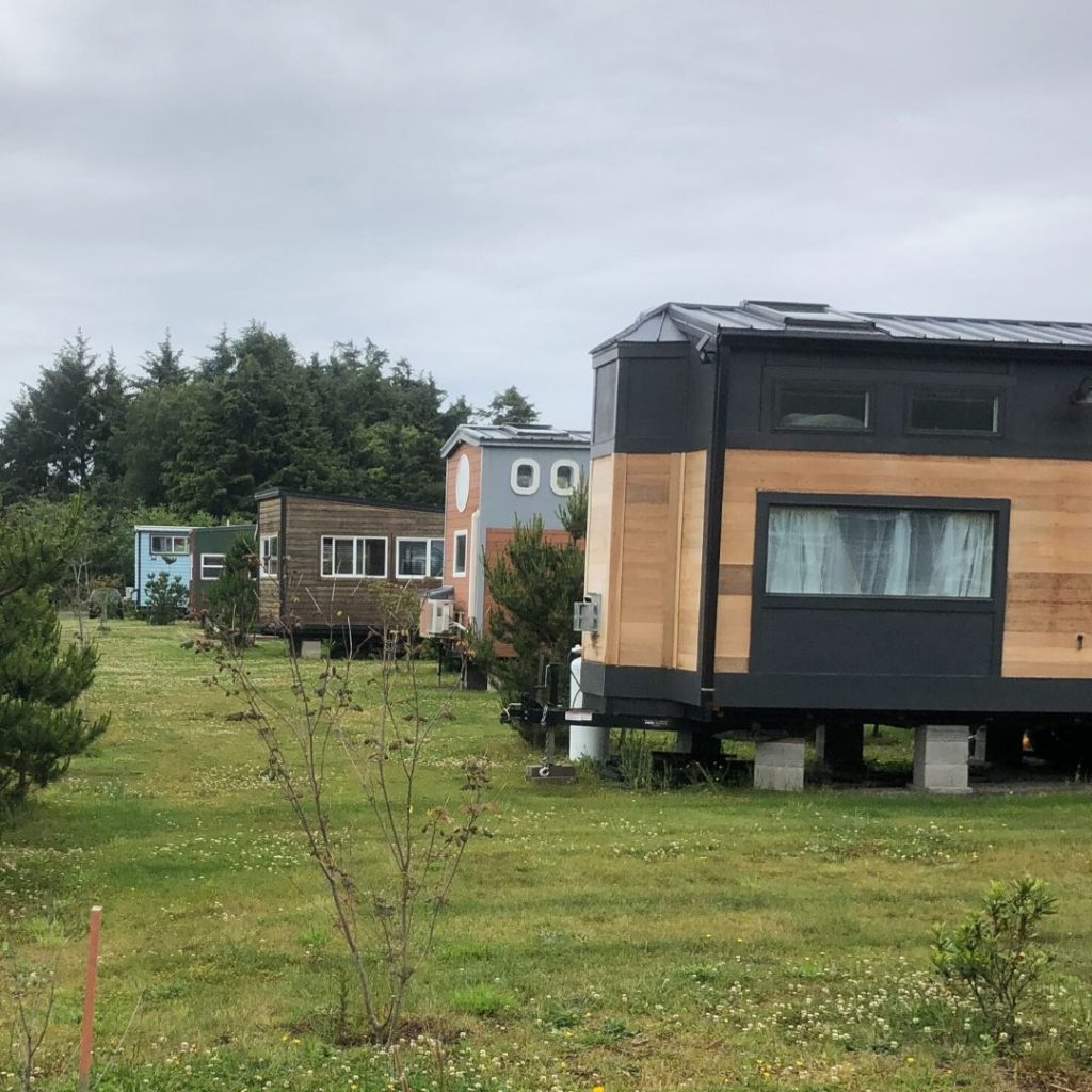 row of tiny houses on green grass