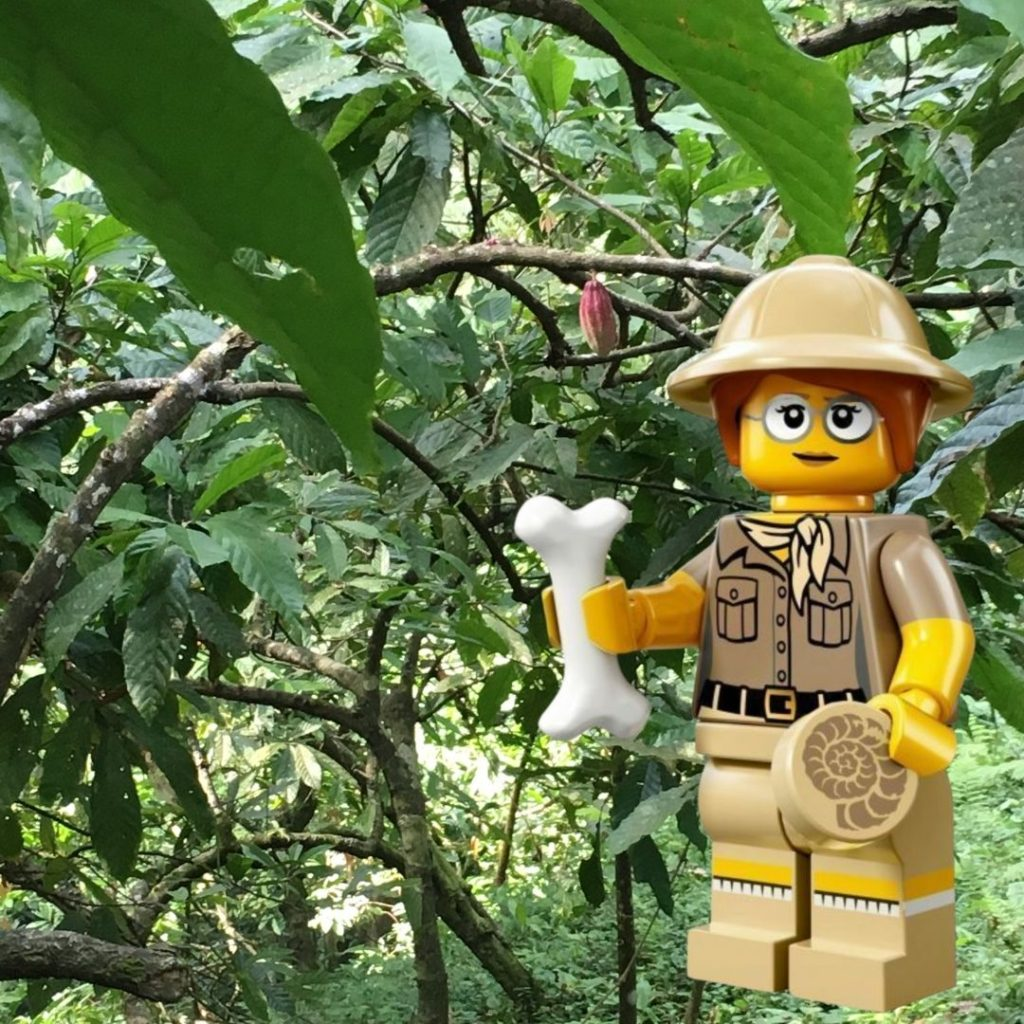 Just Keep Exploring Lego image in front of jungle