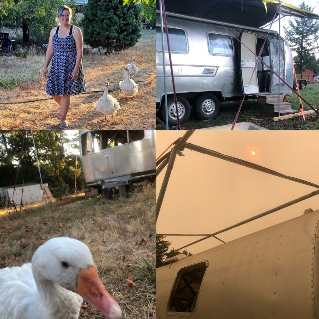 montage of vintage airstream and geese