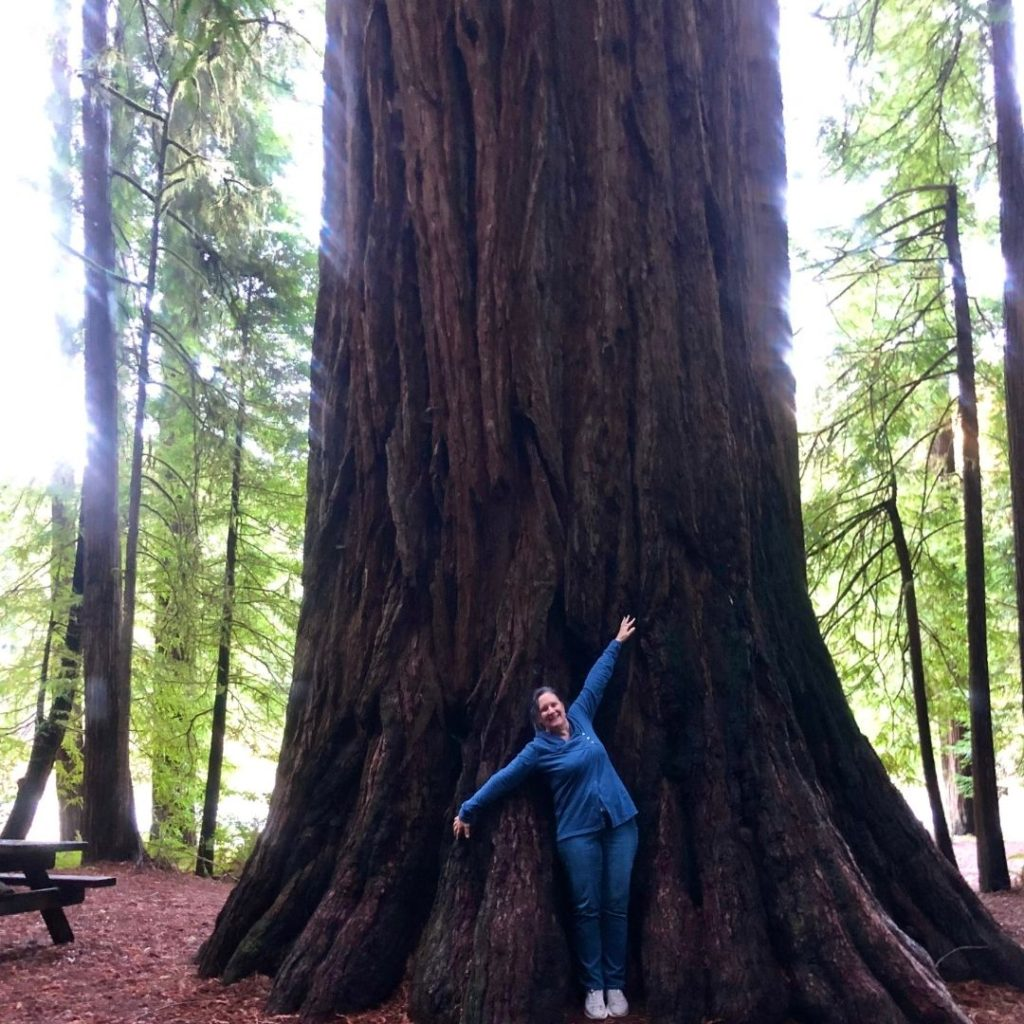 Stacey in front of a redwood tree, Jedediah Smith Park