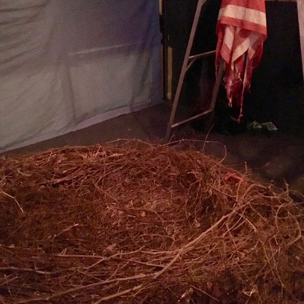The nest made of twigs inside the bar