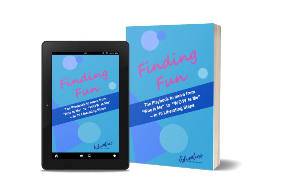 Finding Fun ebook